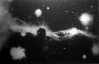 Fekete lófej a Kaszás-csillagképben