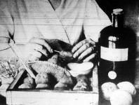 A krumpli vizsgálata laboratóriumban