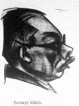 Surányi Miklós
