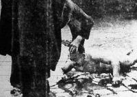A halott Taska sofőr a rakparton