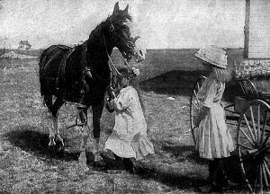 Megnyergeli a lovat s indul hazafelé