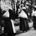 Az asszonyok hátukon viszik a vetőmagot, hogy a harctér mögött a földeket bevethessék