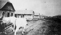 Az épülő pünkösdvásári telepes falu