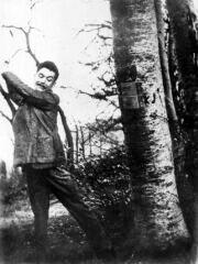 József Attila Csillebercen