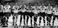 A BBTE jégkorongcsapata - Grozdik, Barcza dr., Helmeczi, Rendi, Dengi dr., Pálfalvy, Fenessy dr., Háray, Szamosi.jpg