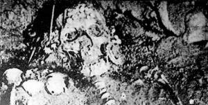 Az inkasírban levő előkelő férfi talán fejedelem is lehetett, mert koponyáját zöldes színbe játszó aranypikkelyek borították.