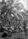 Gróf Festetics: Vásár Bismarck-szigetén
