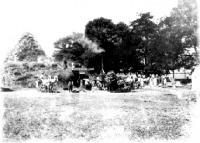 Cséplés gőzgéppel a Darányi-birtokon