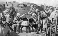 Állatok a boer háborúban
