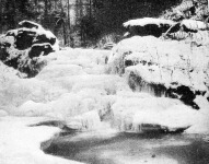 Forrás télen a feketehegyi erdőben, Biharmegyében