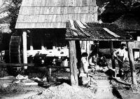 Aranymosó pad, a lésza árnyékában dolgozik az aranyász (Ásványráró, Szigetköz)
