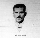 Az asszonyok kegyeltje, Wallner Antal