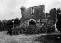Pusztaszeri vár romjai