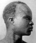 Afrikai arc
