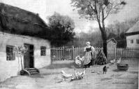 Falusi udvar (Szentmiklóssy Zoltán rajza)