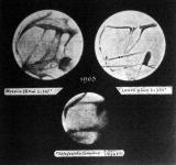 Moreux és Lowell rajzai és Lampland fényképfelvétele a Marsról