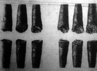 A szivarszivó gép által elszivott szivarok csutkái, amelyekből a szakértő megitélheti a szivarok minőségét