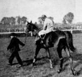 Horkay, a nyertes ló, a verseny után
