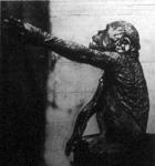 Az ember-majom