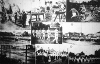 Képek a MOTESz. országos tornaversenyéről