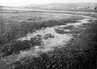 Bugyborékoló földgáz Kis-Sármáson