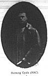 Hornung Gyula