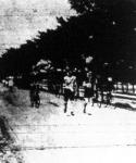 gyalogló bajnokság: a start