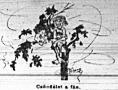 A törzsközönség: Csöndélet a fán