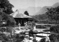 Nikkói kert