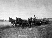 Aratógép munkában (1914)
