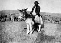 Kospásztor (Kunmadaras)