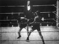 boxmérkőzés