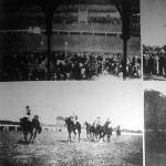 Képek a Budapesti lóversenyről