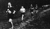 Erdei futóverseny