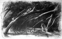 A bommihal vagy békaszerű géb (Periophthalamus katolo), a legfurcsább halak egyike, mely fára mászik, a szárazföldön szaladgál s noha kopoltyuval lélekzik, nem pusztul el a vizen kivül sem.