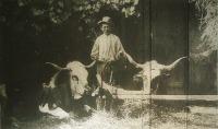 A gazda büszkesége (Pataky Etelka pályaműve az Érdekes Ujság fényképpályázatán)