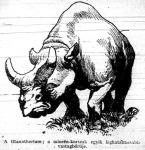 A titanotherium, a miocén kor egyik leghatalmasabb vastagbőrűje