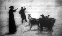 A híres szent-bernáthegyi kolostor kutyáinak egy csoportja