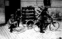 Postagalambok szállítása a német hadseregben