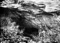 Szeleta barlang, 1908