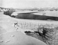 Barkász Lajos: Falurészlet télen