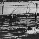 vízipóló NSC - III. ker. TVE