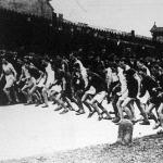 MTK szenior mezeiversenye (start)