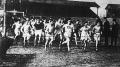 Cross country élet a Ferencvárosban - Némethy vezetésével a mezőny az FTC pályáról kifut a mezőkre
