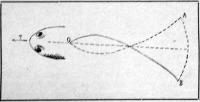 A hal, vagy madár hátulsó részének hullámzó mozgása