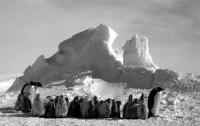 Antarktiszi látkép