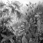 A lombosmohák (Bryophyta)