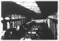 A fővárosi villamosvasutak Pálffy-téri áramfejlesztője