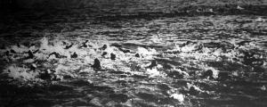A folyambajnokság résztvevői a Dunában közvetlenül a start után