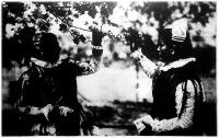 Virágzik az almafa. Kalocsavidéki (Homokmégy) lányok festői népviseletben egy virágzó almafa alatt.